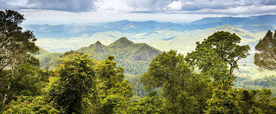 Wild forests and reserves in Sri Lanka